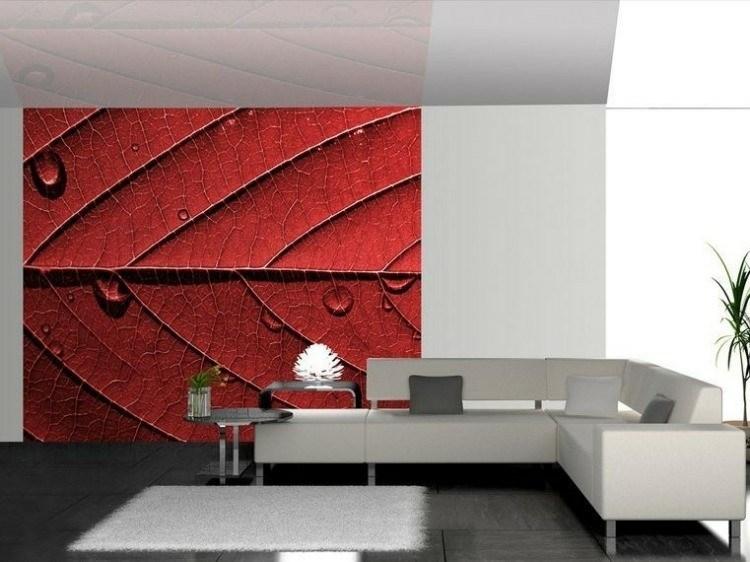 vista foto blanco hojas roja