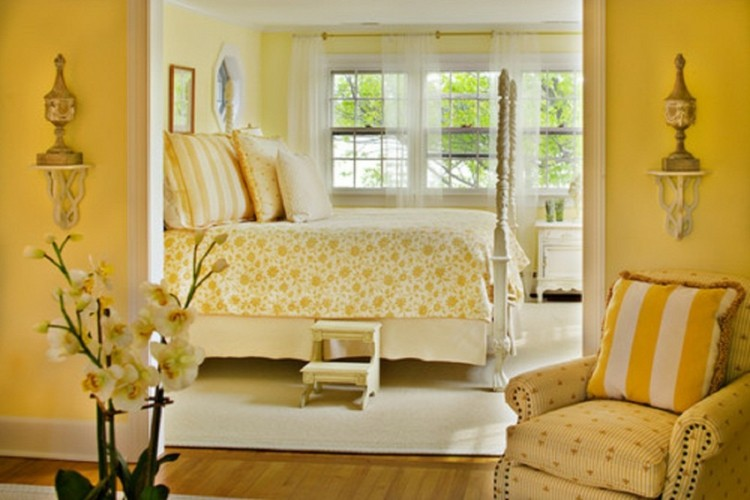 amarillo detalles decorado flores color
