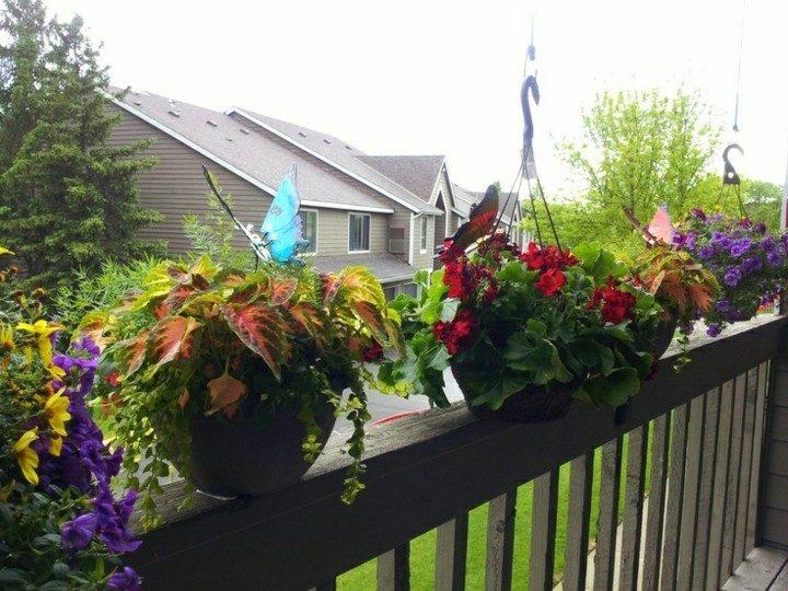 Balcones peque os decorados con mucho estilo 45 ideas for Plantas para balcones