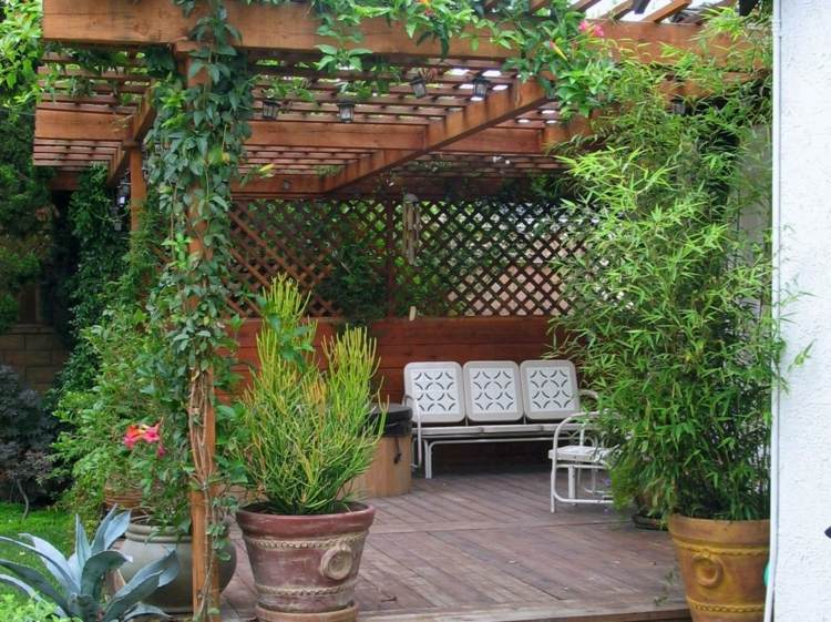 barro decoracion ideas soluciones plantas