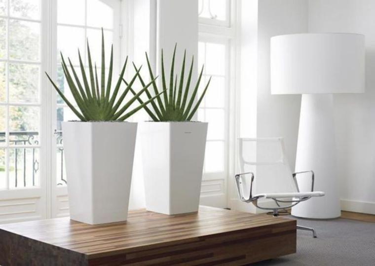 decorar con plantas macetas modernas