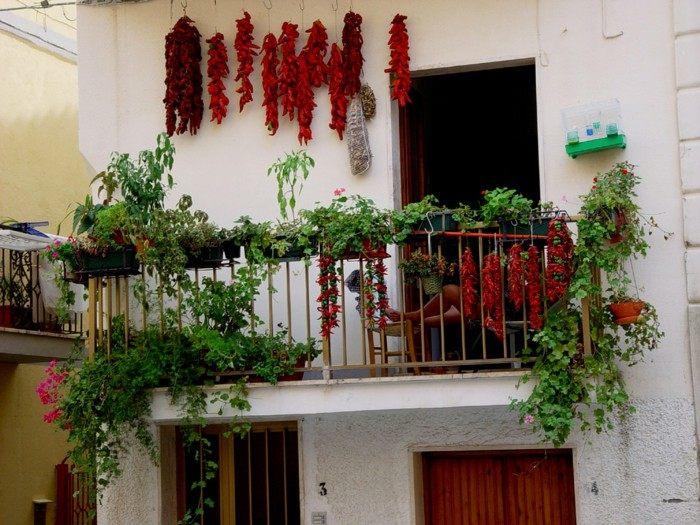 decoracion de balcones soluciones macetas verde