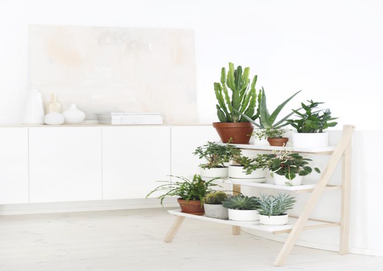 Decorar con plantas es genial treinta y ocho ideas for Estanteria plantas interior