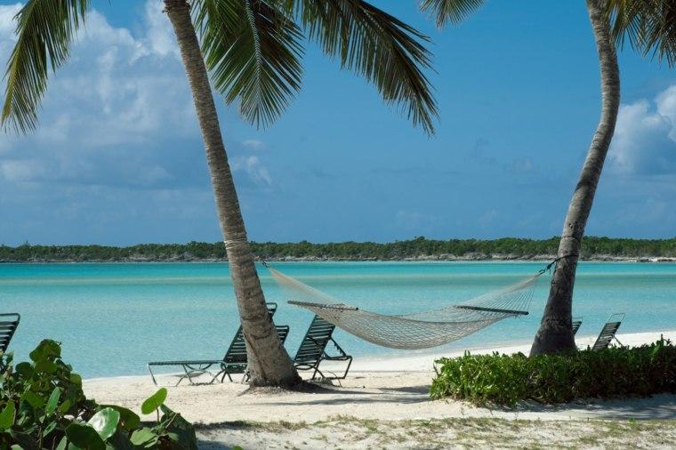 palmeras destinos peces sillas hamacas