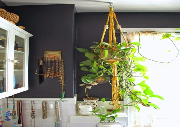 planta maceta colgante cuarto baño