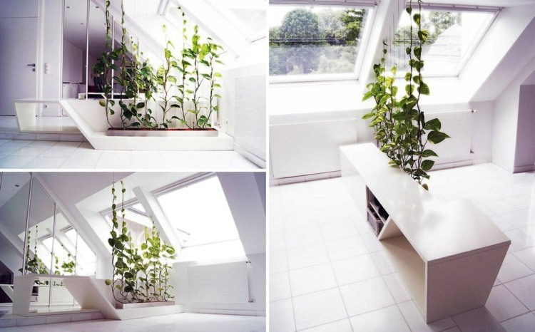 plantas detalles casas blanco ideas