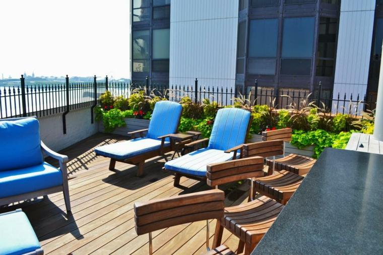 plants design terrace decorated blue flowers