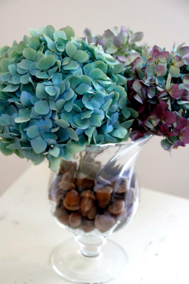 semillas jarron vidrio elegante azules