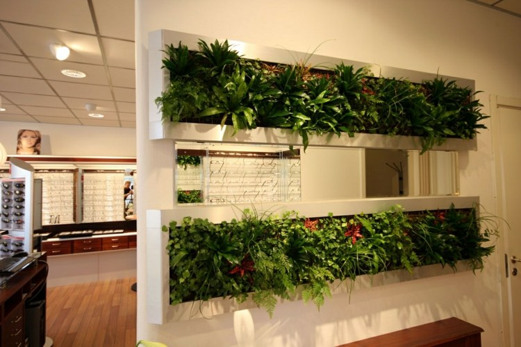 separadores de ambientes plantas flores