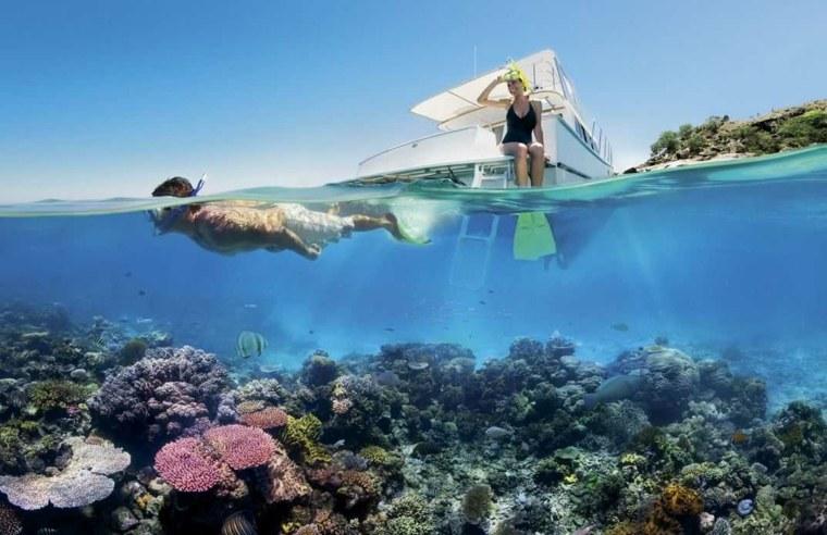 yates alidas casas originales tortugas buceo