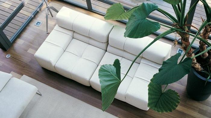 blanco suelos maderas verdes plantas soluciones