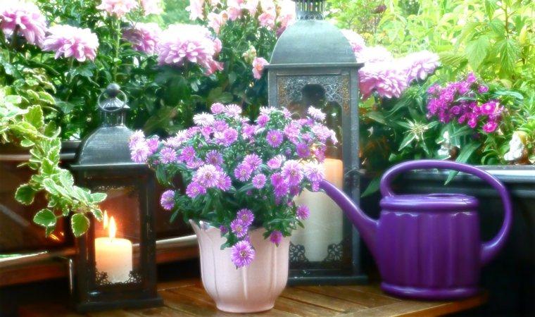 bonita decoración terraza flores