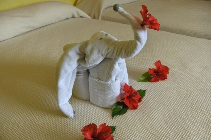 bonito diseño elefante deco toalla