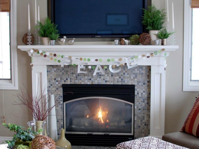 chimeneas estiloas variado plantas interiores led