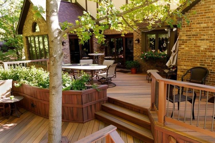 clasico madera corteza diseños plantas