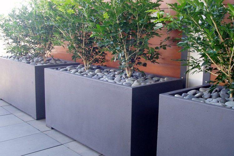 diferencias detalles rocas conceptos verdes ideas