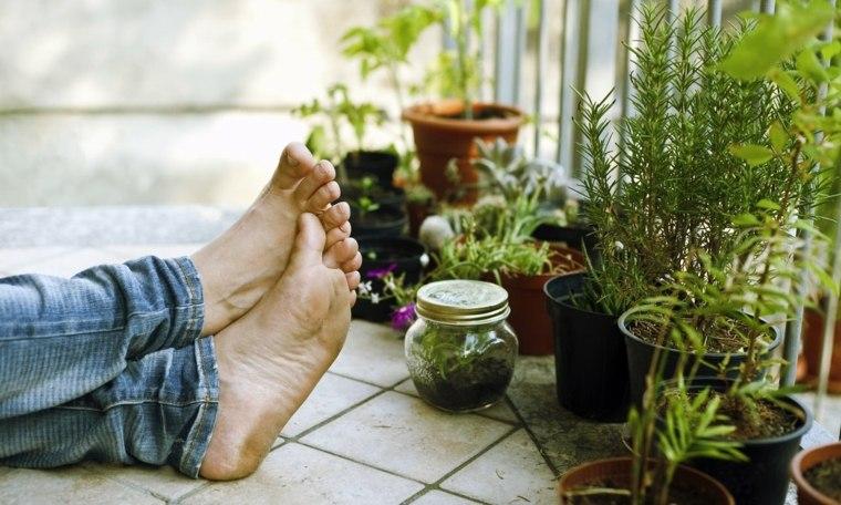 Decoracion de balcones ideas nuevas para esta primavera for Adornos con plantas de nochebuena