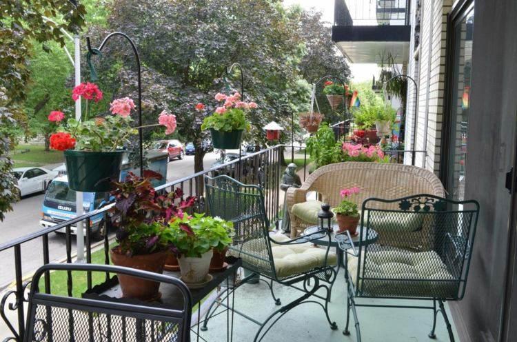 diseño decoración plantas exterior