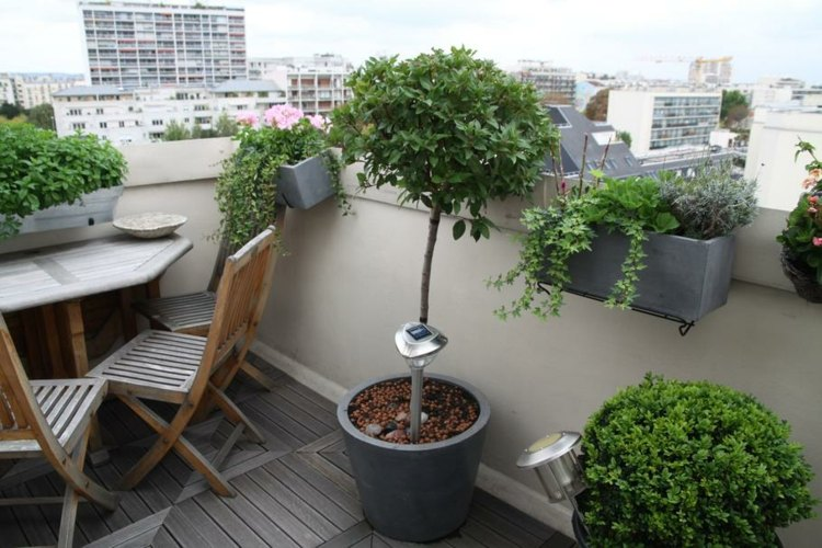 Decoracion balcones cincuenta ideas alegres y coloridas for Plantes japonaises exterieur