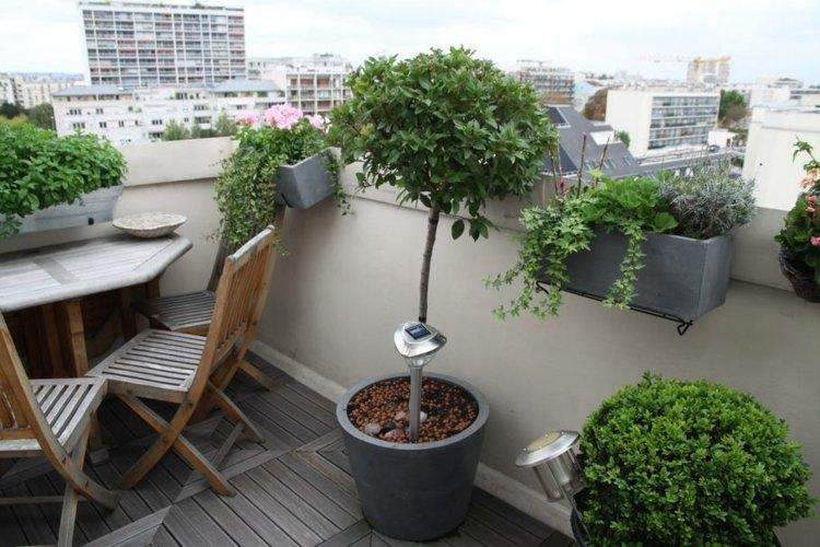 diseño decoracion balcones plantas