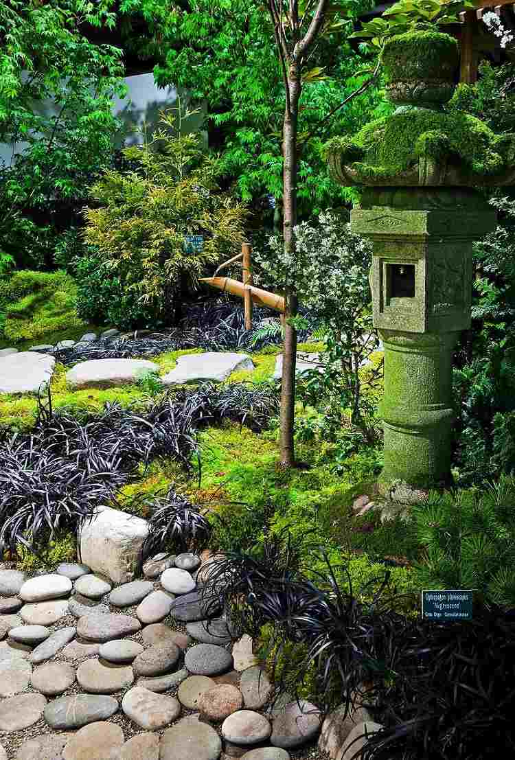 bonito diseño jardín Zen