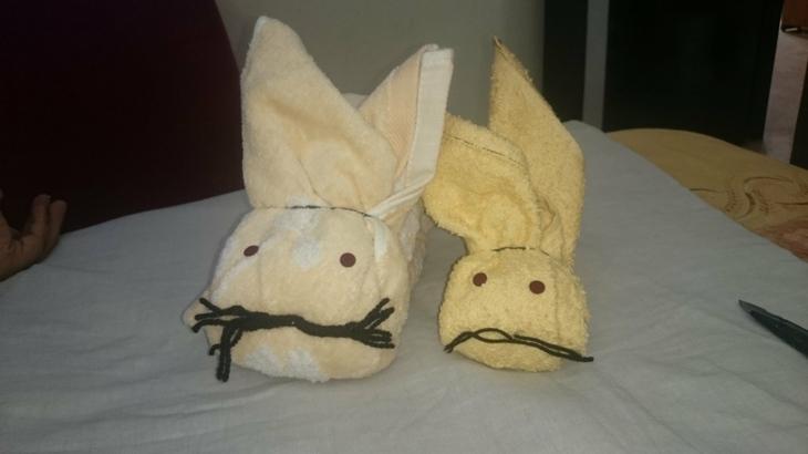 dos conejos toallas decorativos