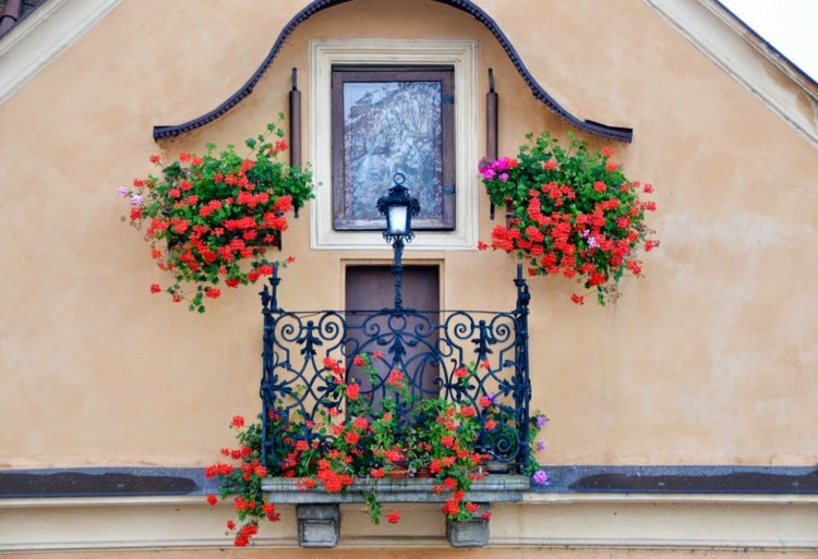 Plantas De Exterior Para Terrazas Y Balcones 38 Ideas - Fotos-de-balcones-con-flores