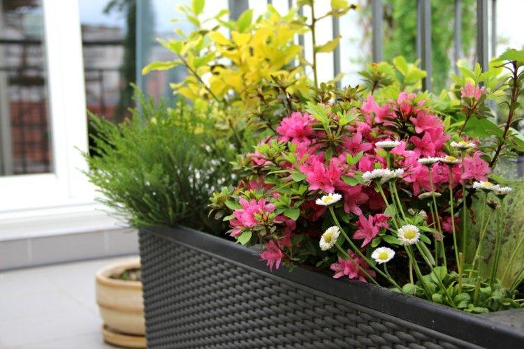 jardinera mimbre flores golores