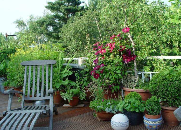 estupendo diseño decoración terraza plantas