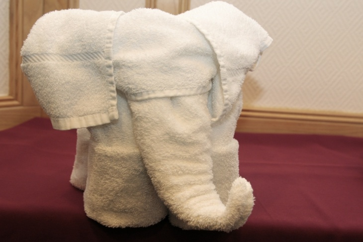estupendo elefante toalla forma blanca