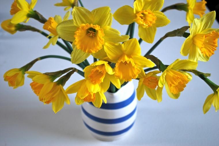 foto jarron flores narcisos amarilos