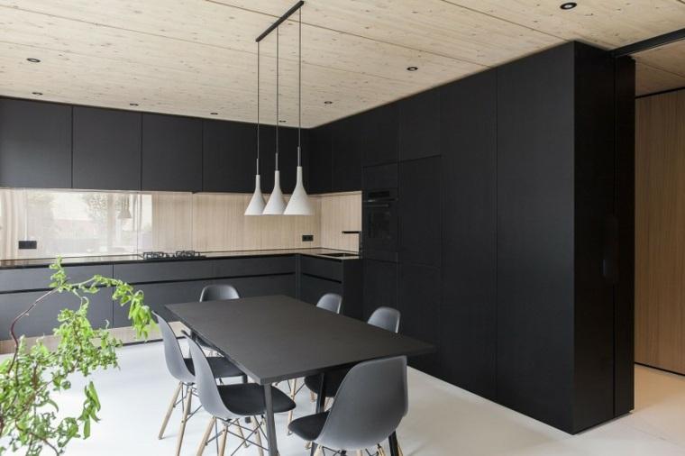 ideas cocinas muebles negros moderno