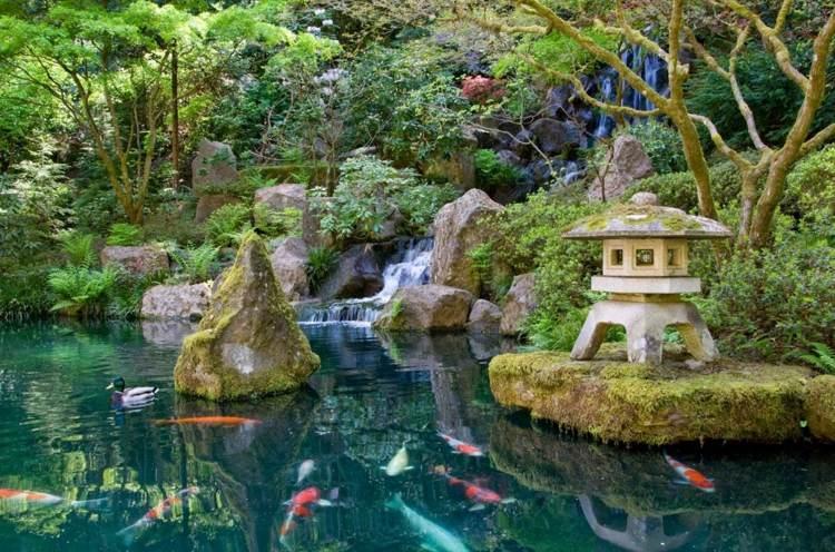 jardin japones ideas detalles interiores plantas peces