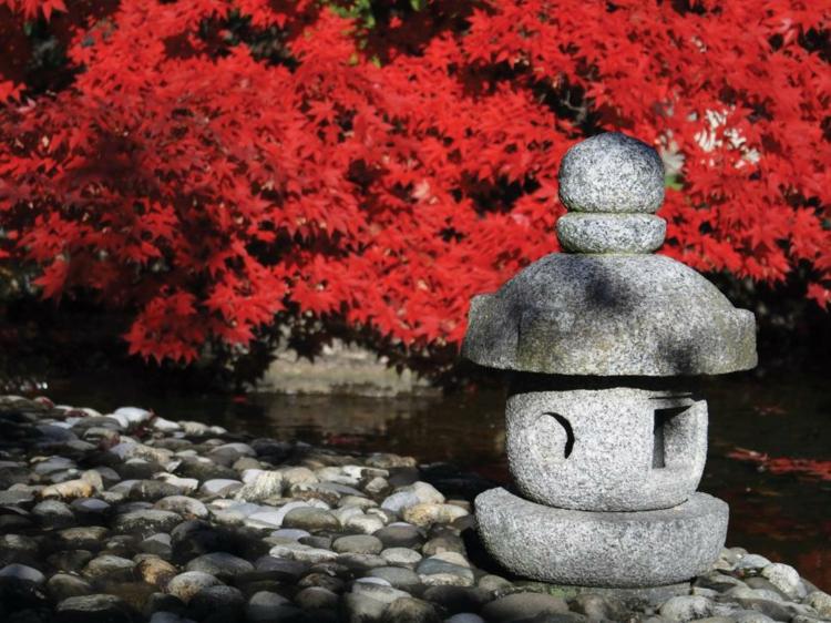 jardin japones ideas detalles interiores suelos rio
