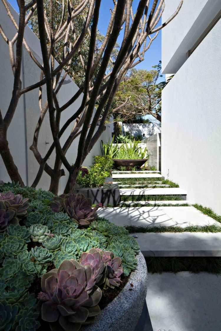 jardines pequeños interior estrecho nivelada macetas ideas