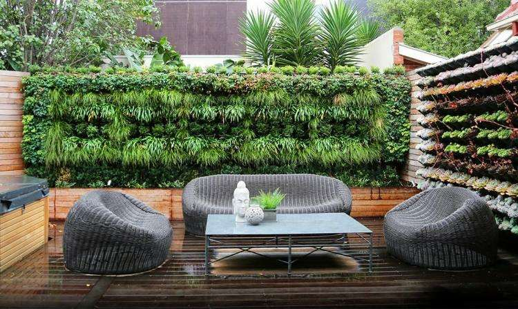 jardin trasero pequeno jardin vertical plantas ideas