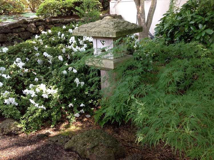 jardin japones ideas decoracion soluciones rocas