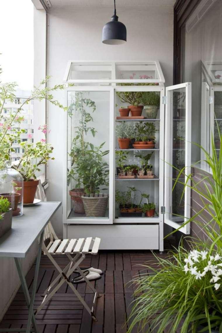 las plantas perfectas balcon armario cristal ideas