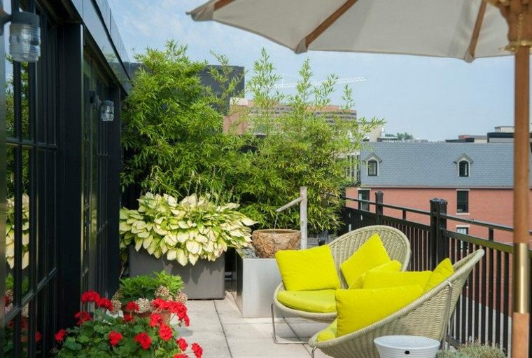 las plantas perfectas balcon bambu ideas