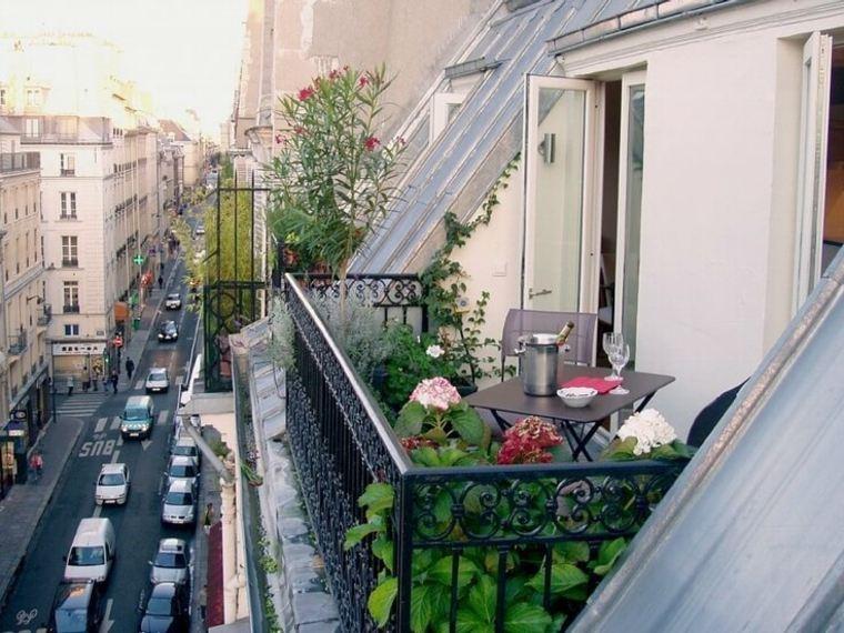 plantas perfectas balcon consejos casa ideas