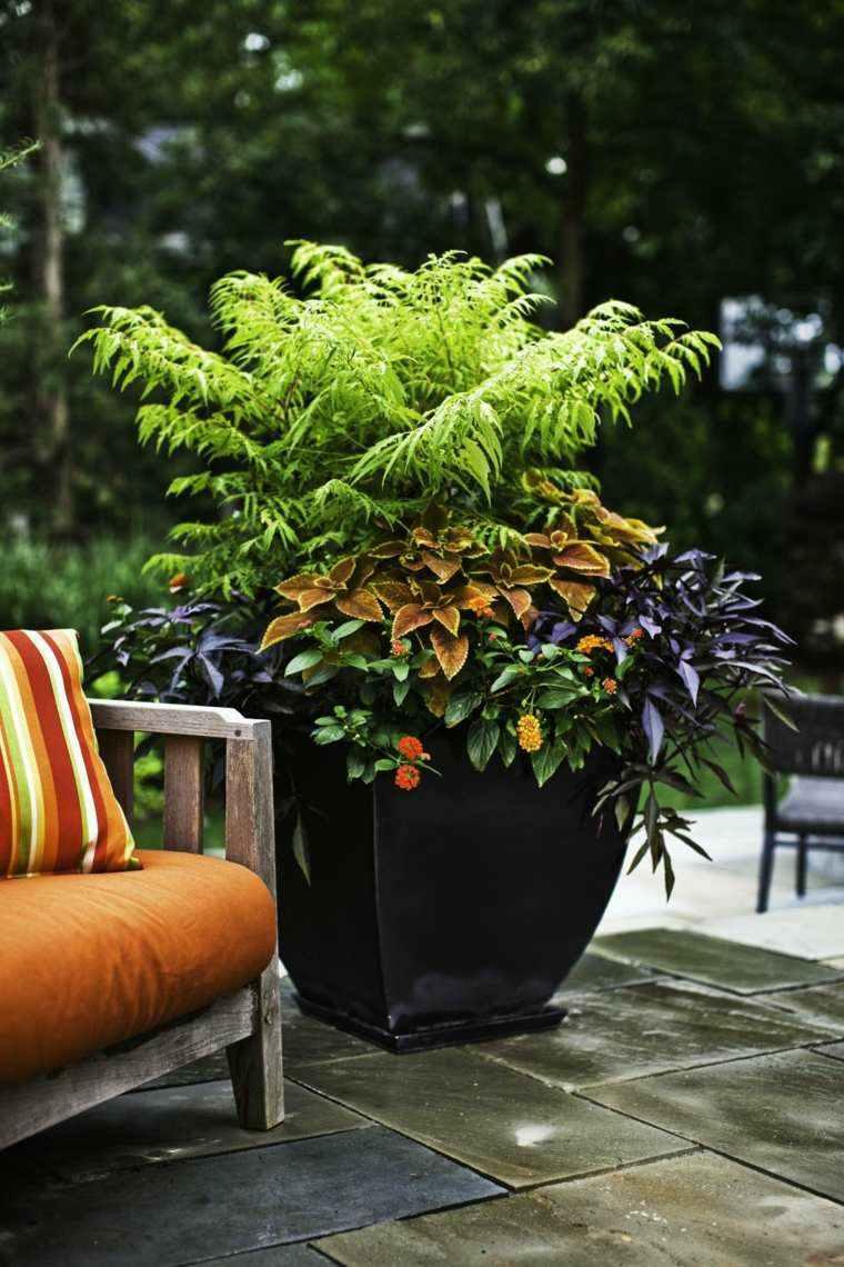 plantas perfectas balcon maceta negra preciosa ideas