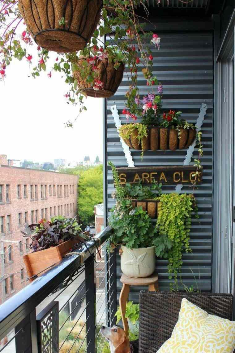 plantas perfectas balcon macetas pared ideas