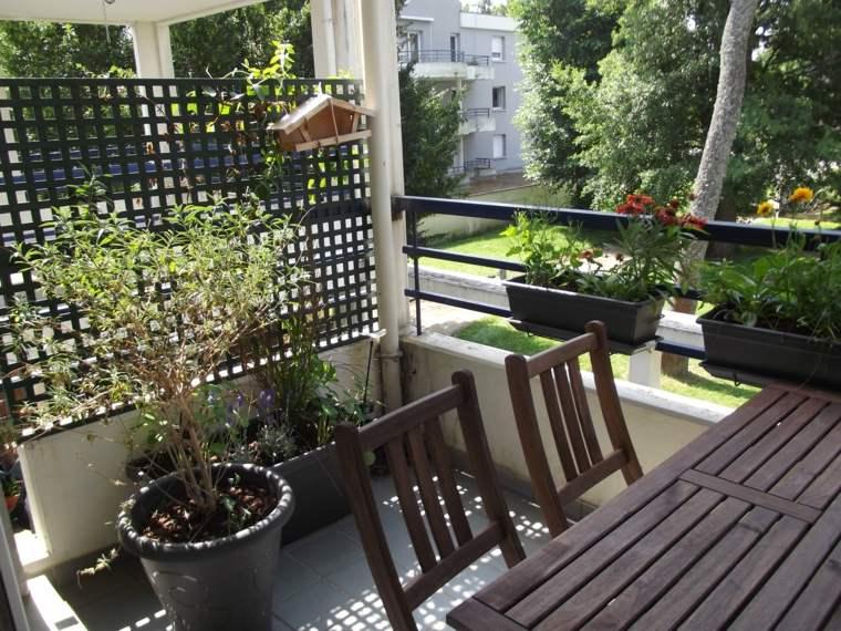 plantas perfectas balcon separador madera ideas