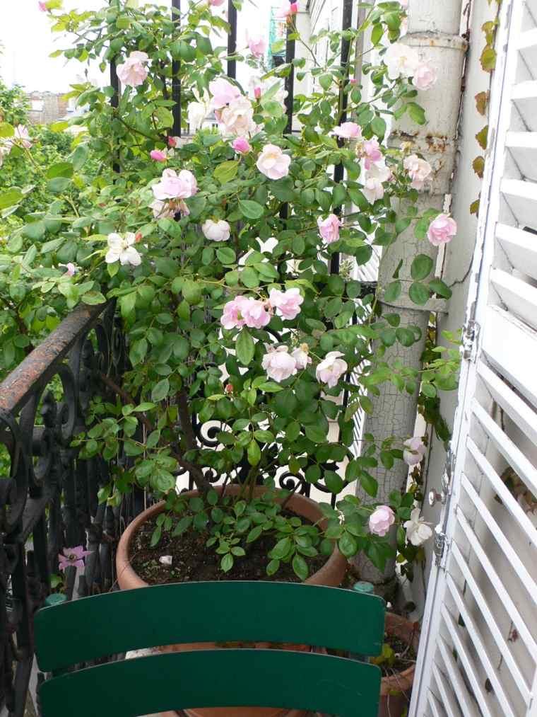 plantas perfectas balcon sillas verdes ideas