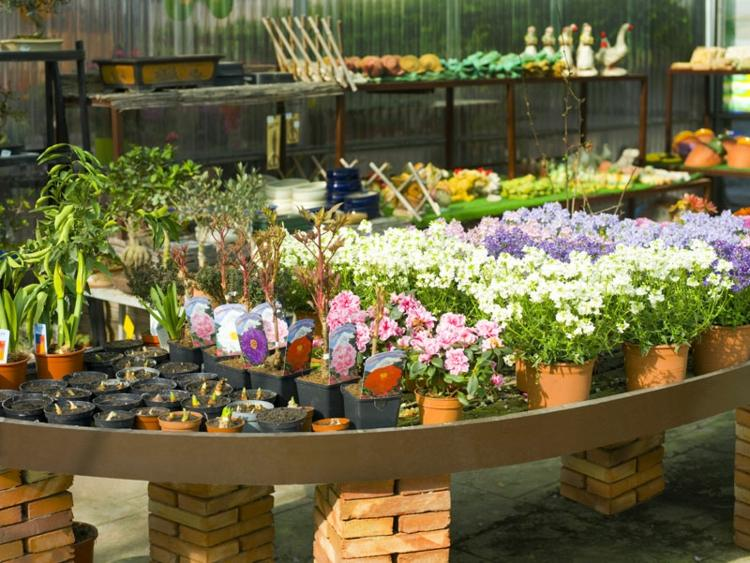 Plantas de exterior para terrazas y balcones 38 ideas - Plantas jardineras exterior ...