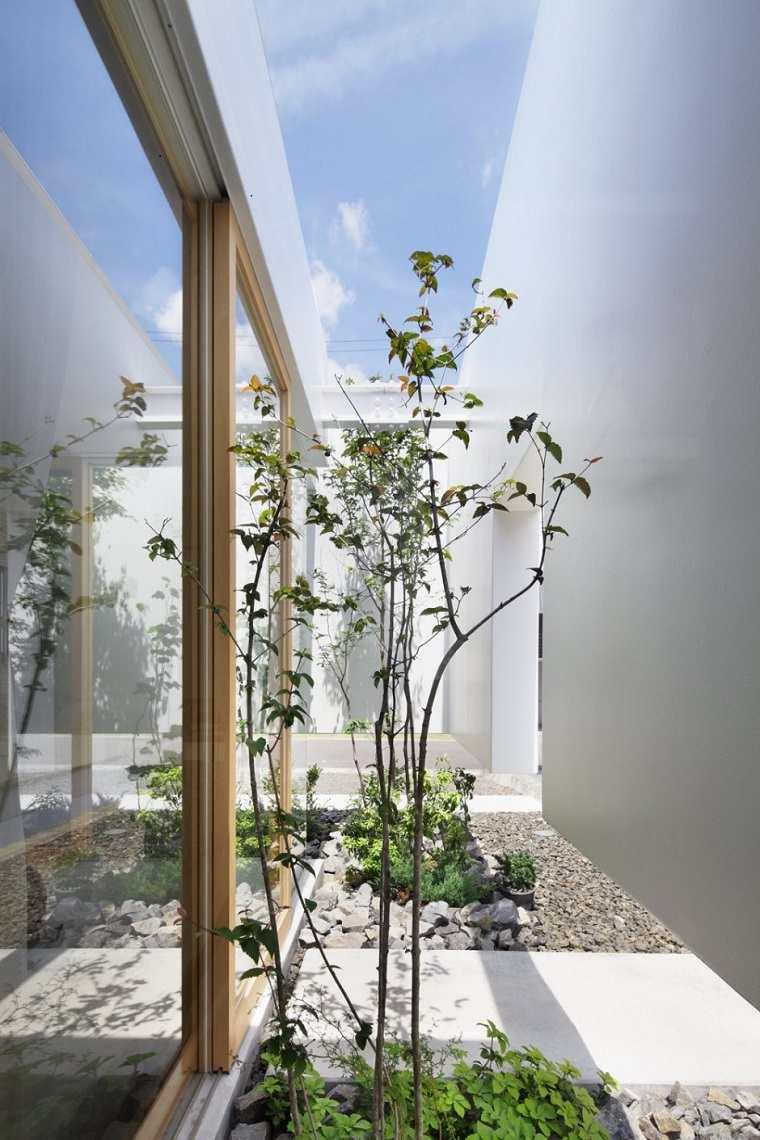selección plantas patio pequeño