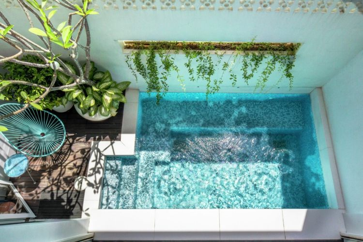 plantas piscina integrada decorado muro