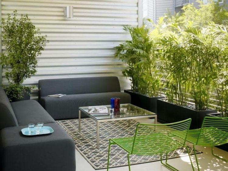plantas separadors naturales variantes vista