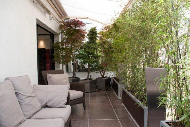 terraza balcon plantas cañas bambú