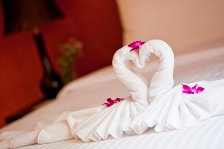 bonitos cisnes de toallas